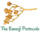 The Banerji Protocols